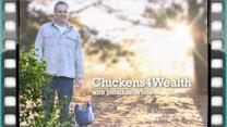 Chickens4Wealth